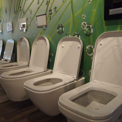 Dusch-WCs und Toilettensitze im Neckar-Odenwaldkreis.